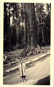 mynn white and sequoia