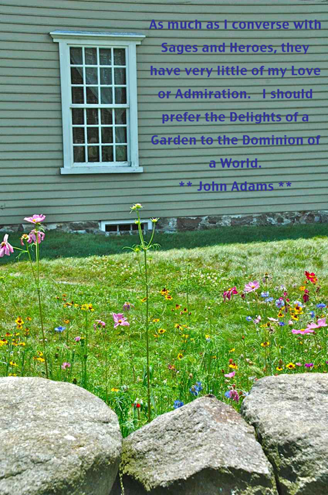 flowers and rear facade of John Quincy Adams' birthplace